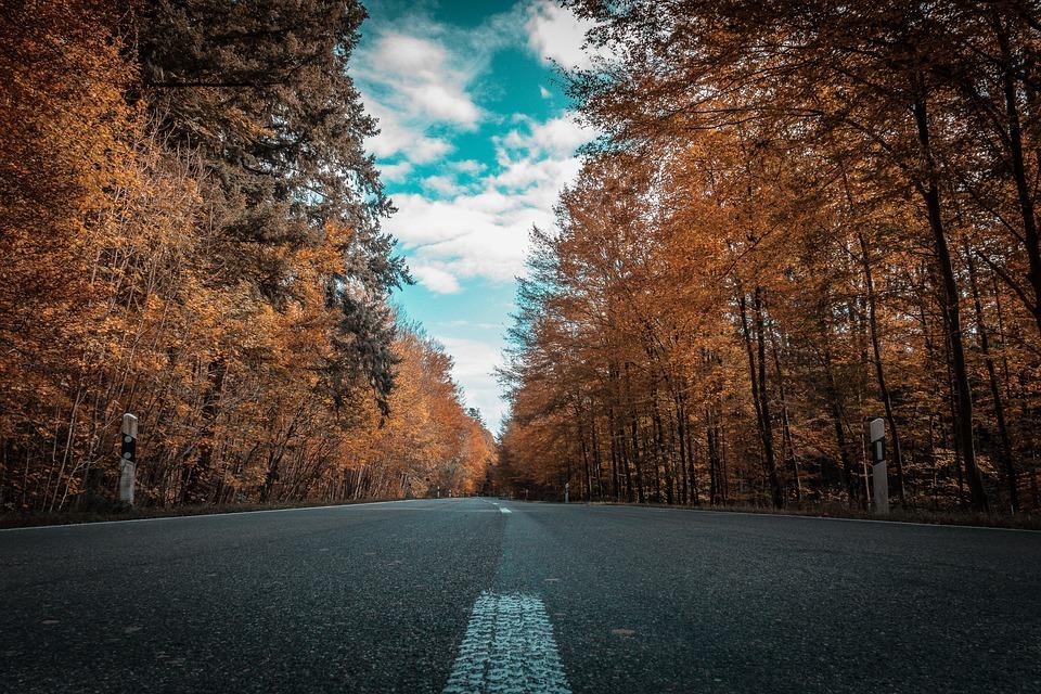 ドライブ 空 秋 道路