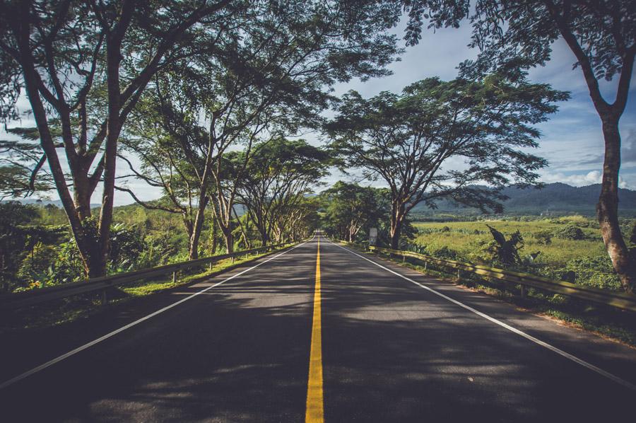 道路 黄色線 進路変更禁止違反 車線