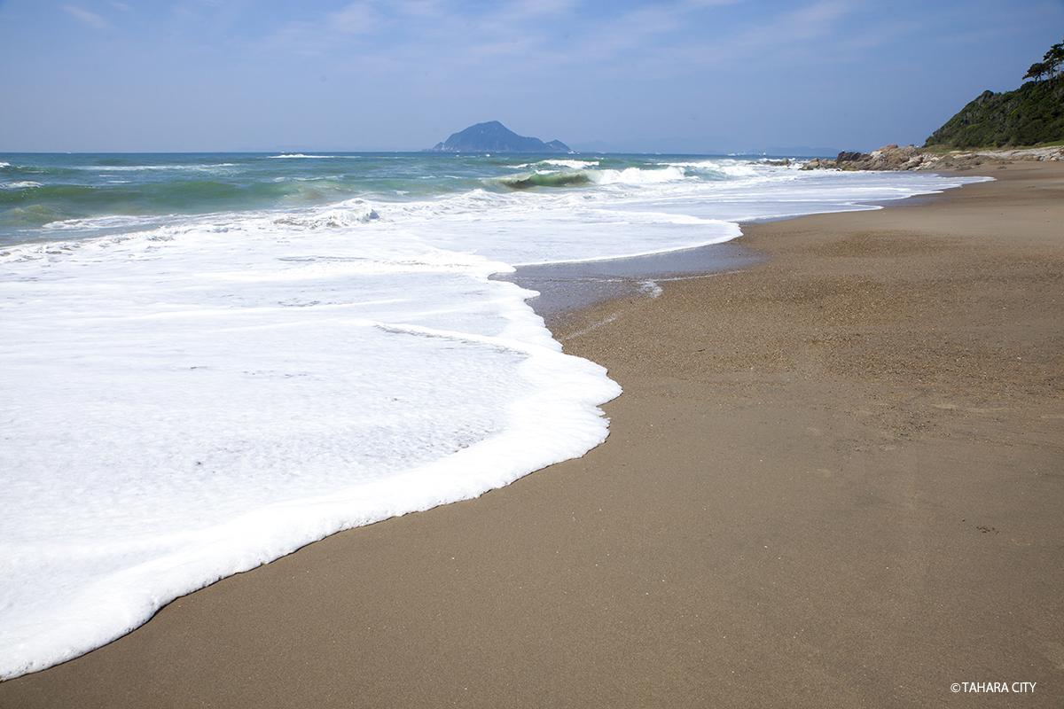 恋路ヶ浜 伊良湖岬 海 山 砂浜